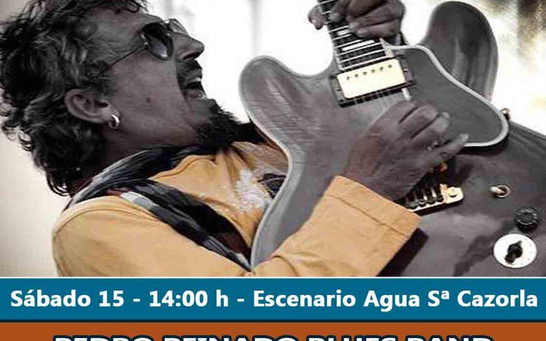 Pedro Peinado Blues Band